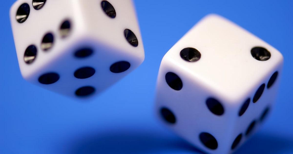 在线掷骰子软件的领先软件开发商和供应商